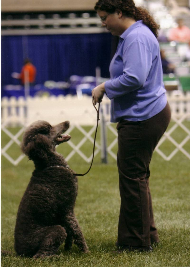 Penny doing fronts in Rally Novice B at PCA National Specialty. 4/22/08.