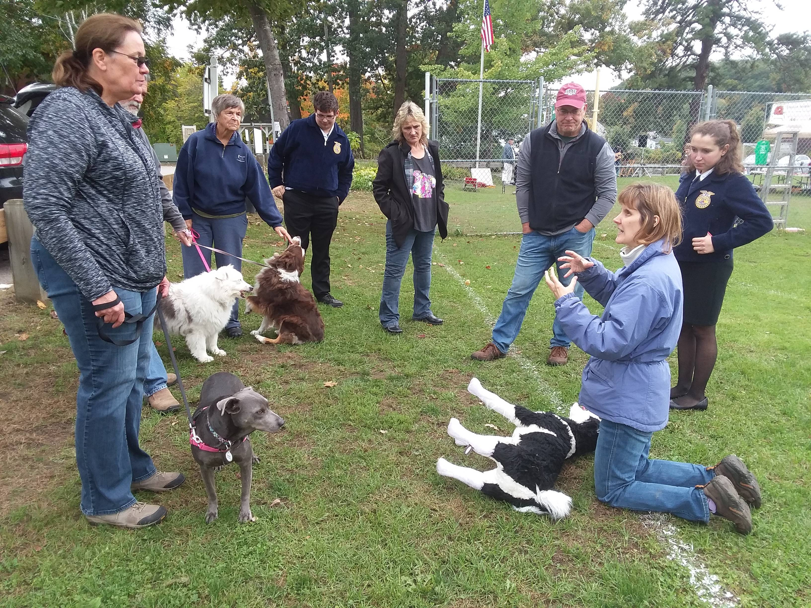 NH Healthy Pets Animal CPR Demo