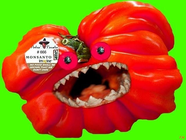 Pedros Tomatos