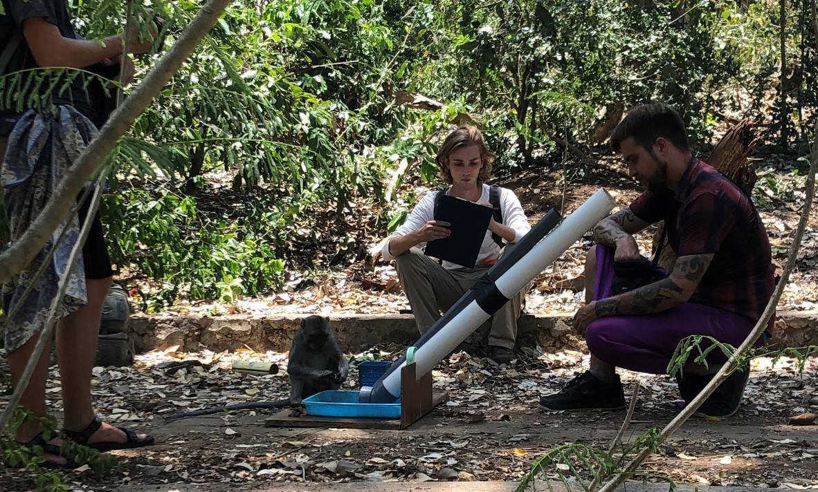 Christian Dunn, Caleb Bunselmeyer and Matthew Gardiner experimentally inducing bartering in a long-tailed macaque (Uluwatu, Bali, Nov. 2019)