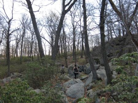 Raccoon Brook Hills Trail