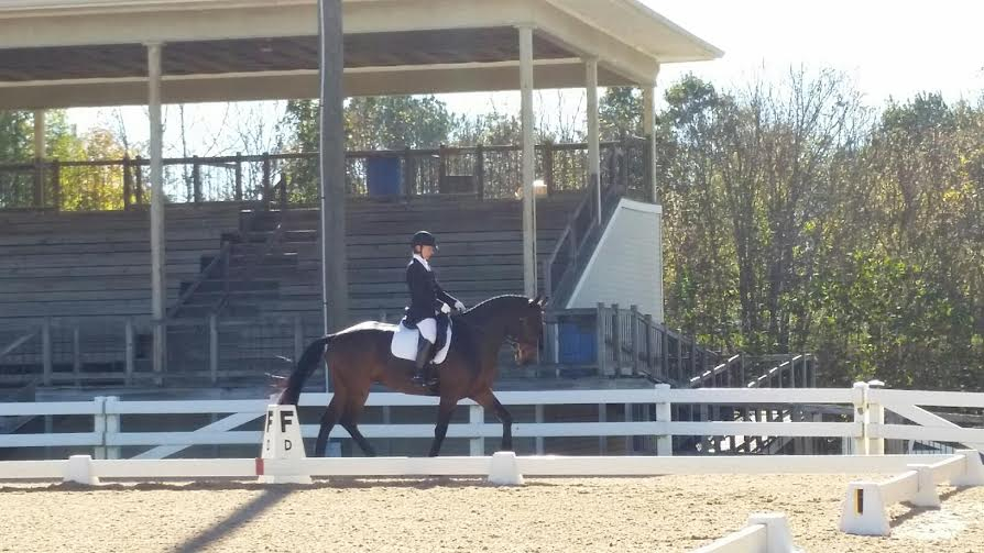 Lee Reilly riding Drifters Way at 3rd level at USDF Region 1 Championships