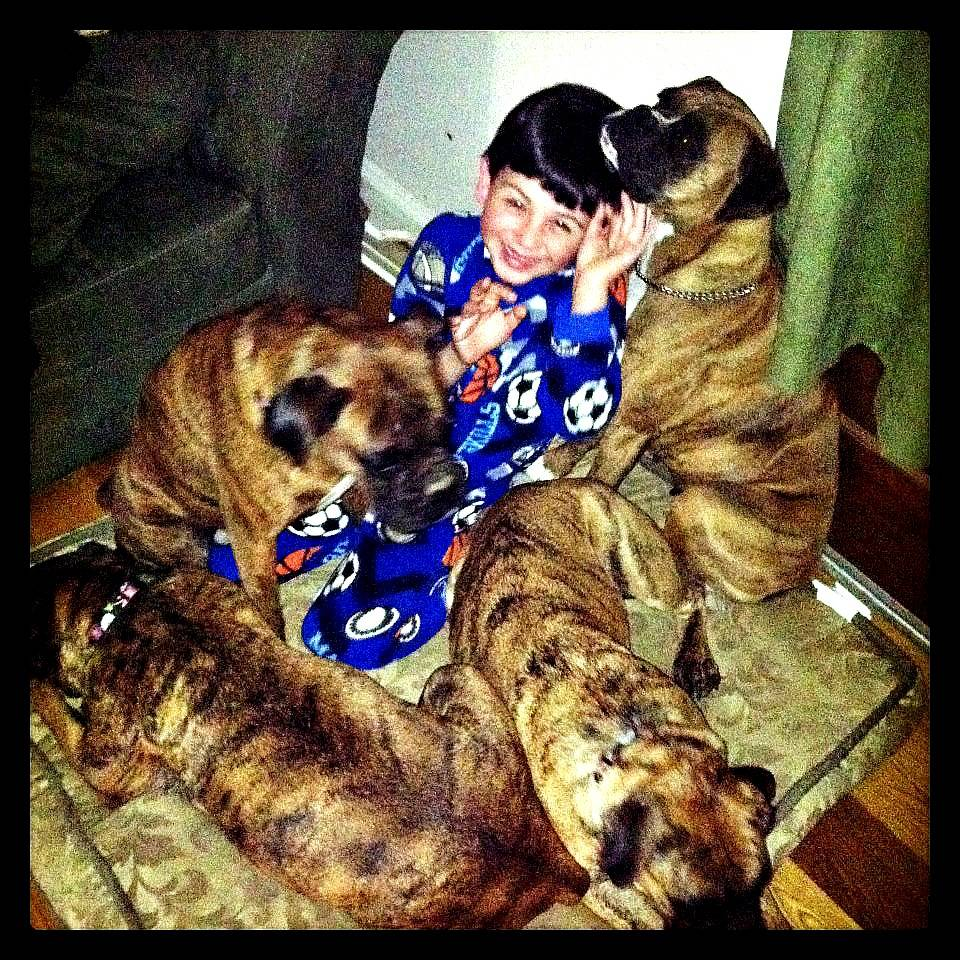 Our Son With His Pack :)