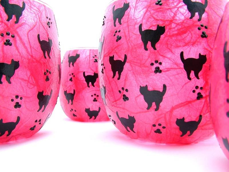 Shocking Pink and Black Mussy Cats