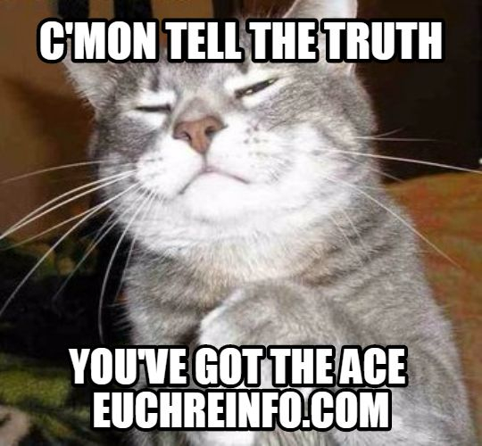 C'mon tell the truth...you've got the ace.