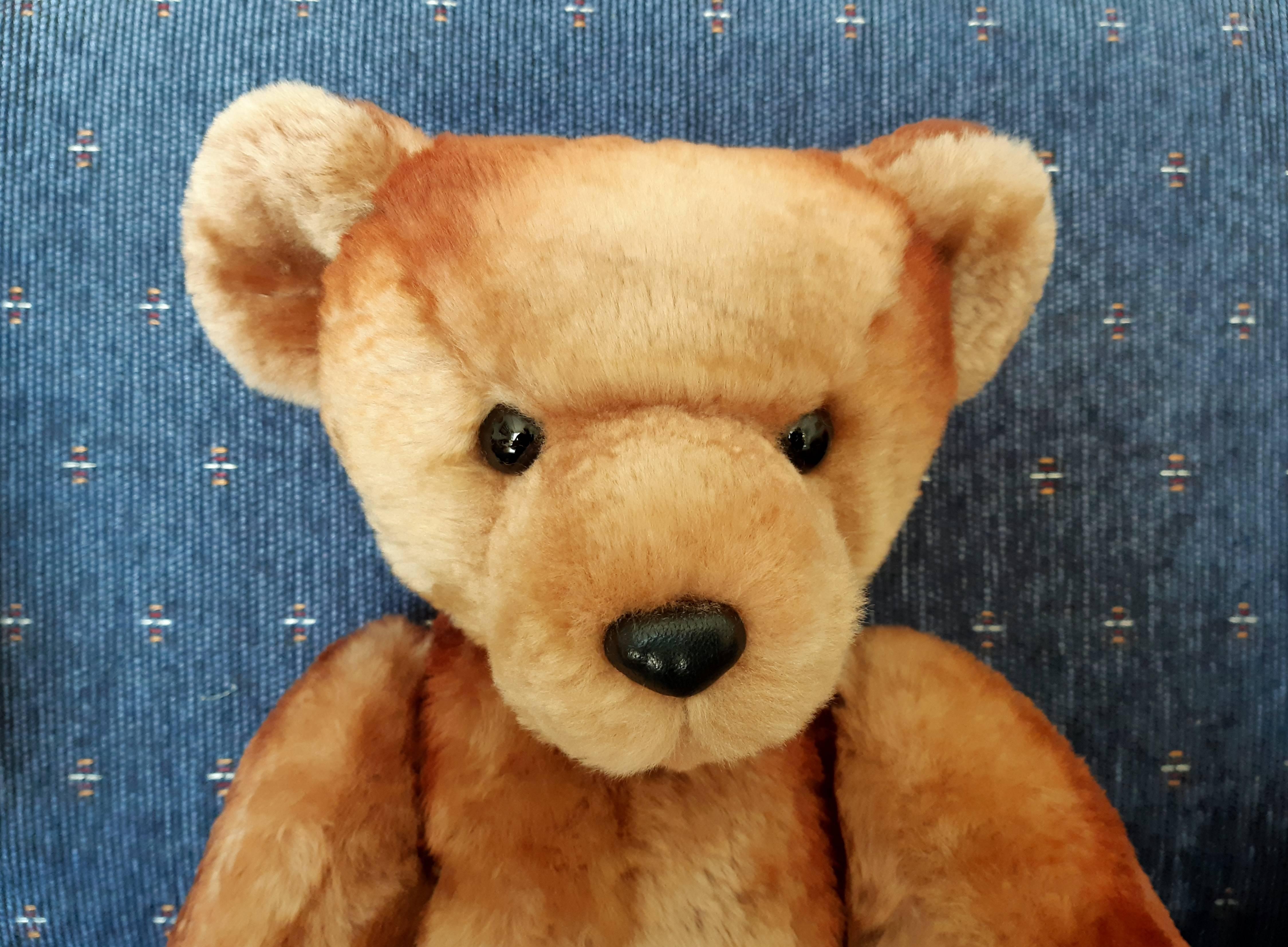 The Daughter Bear