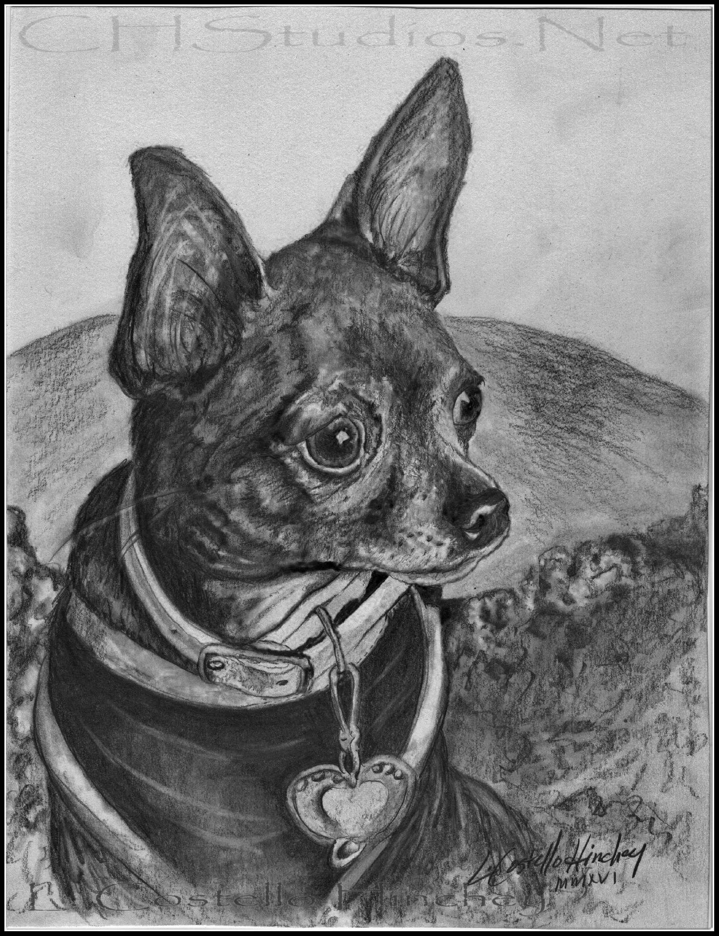 Ivy Pet Portrait Commission