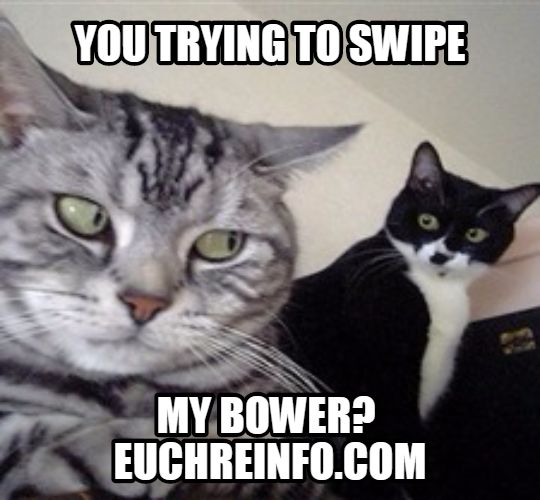 You trying to swipe my bower?