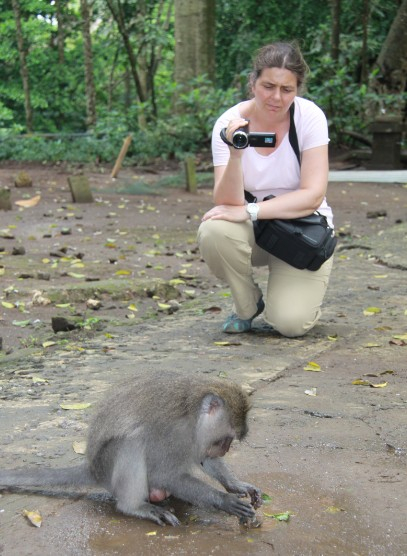 Noelle Gunst filming an adult male long-tailed macaques performing stone handling behavior (Ubud Monkey Forest, Bali, May 2017)