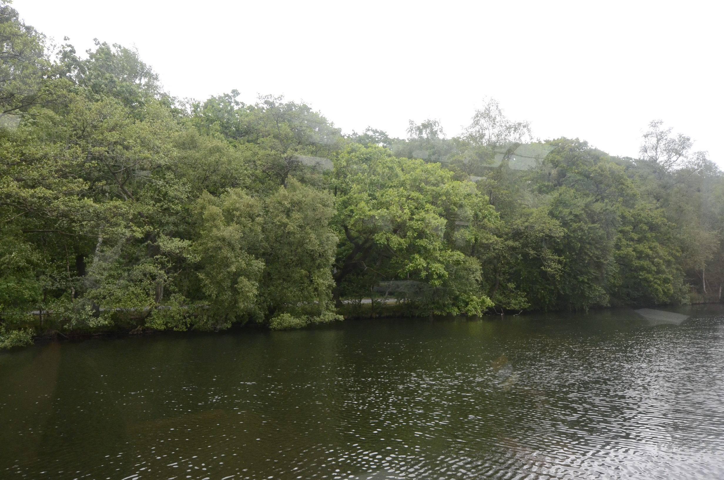 Let regne på søen