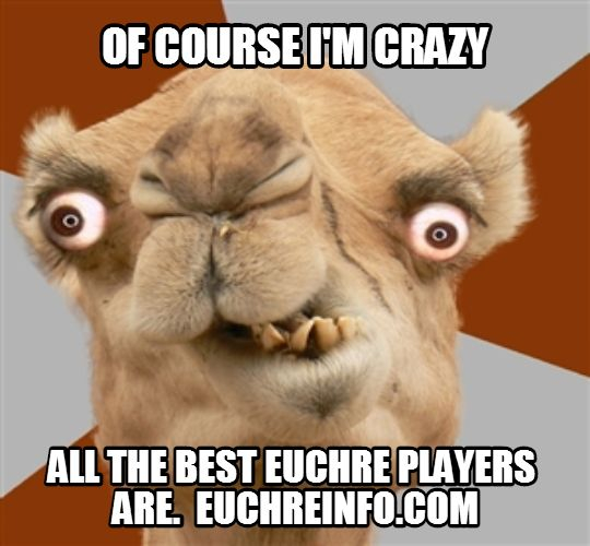 Of course I'm crazy. All the best Euchre players are.