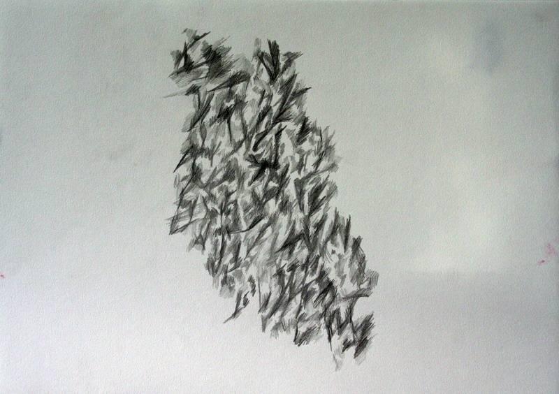 Drawing 26 Eleanor MacFarlane