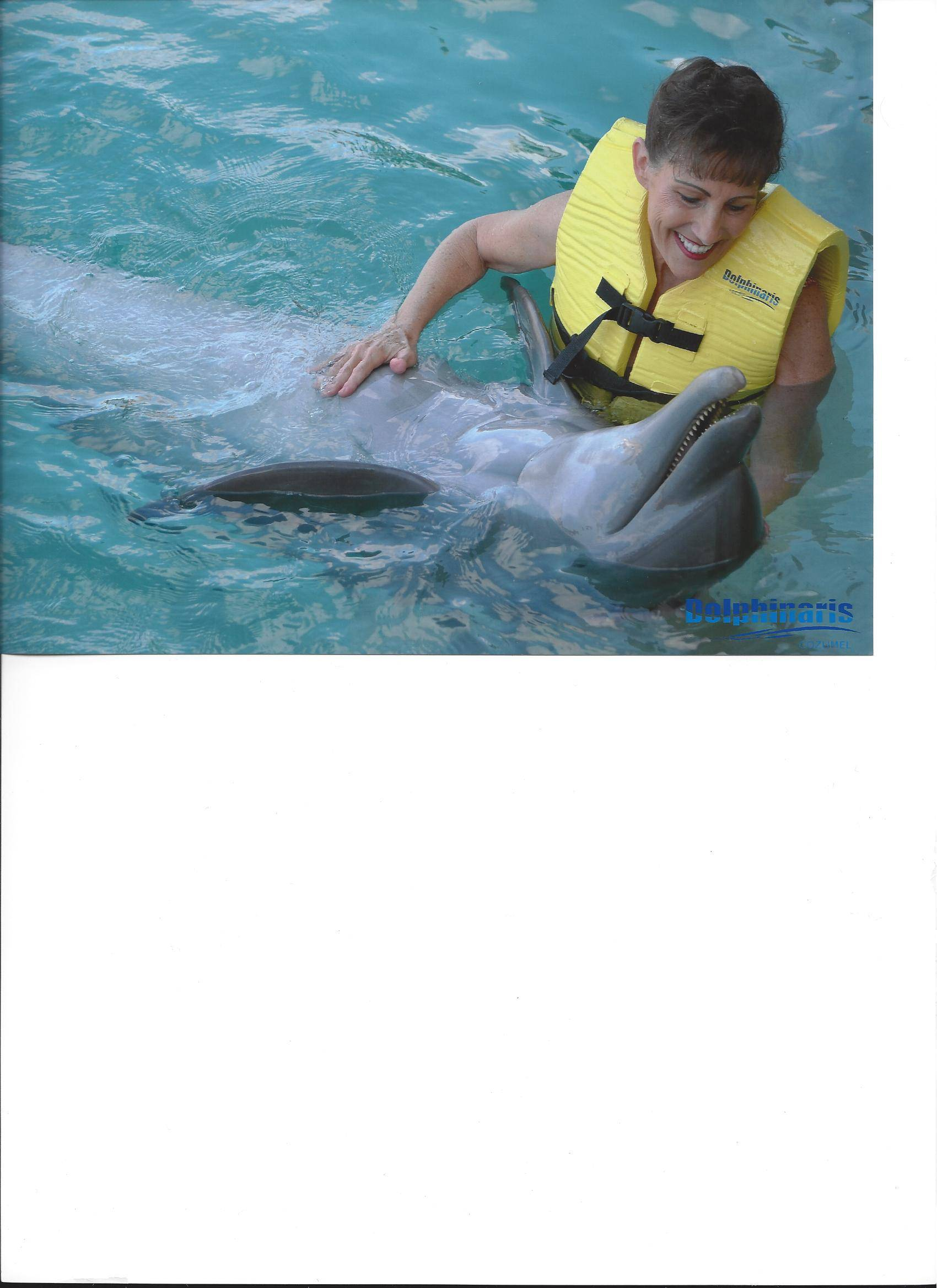 Violet with Dolphin - Cozumel