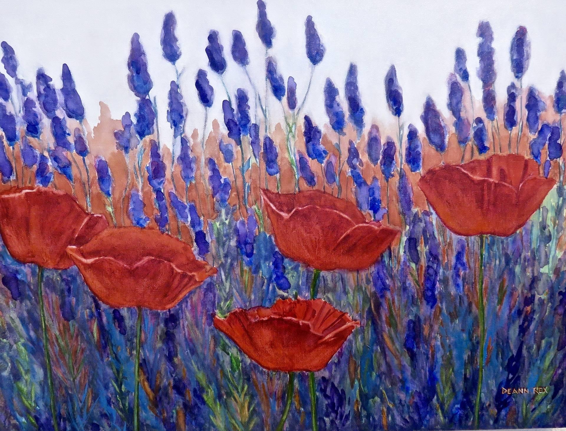Red Poppy Garden