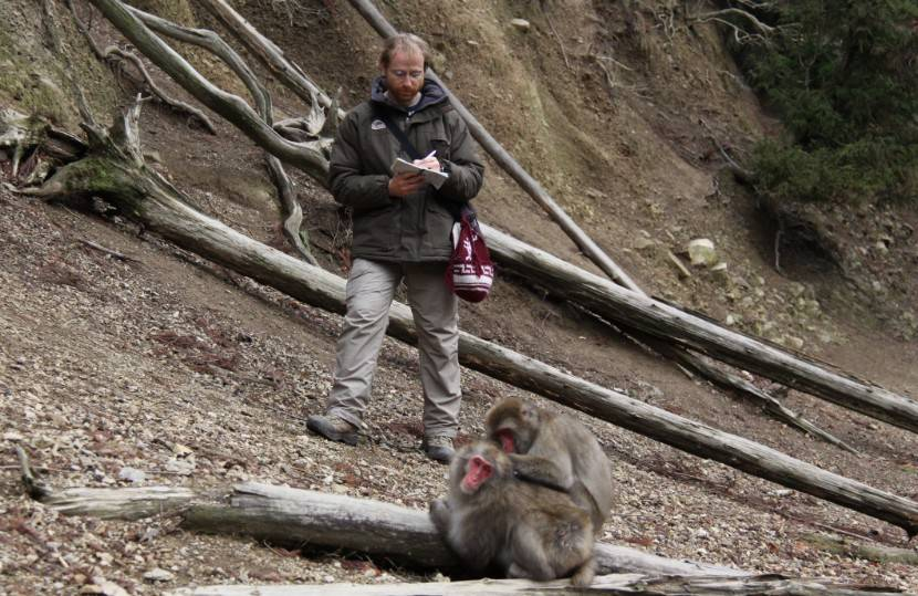 JB Leca collecting data on a female homosexual consortship of Japanese macaques (Minoo mountains, Central Japan, January 2013)