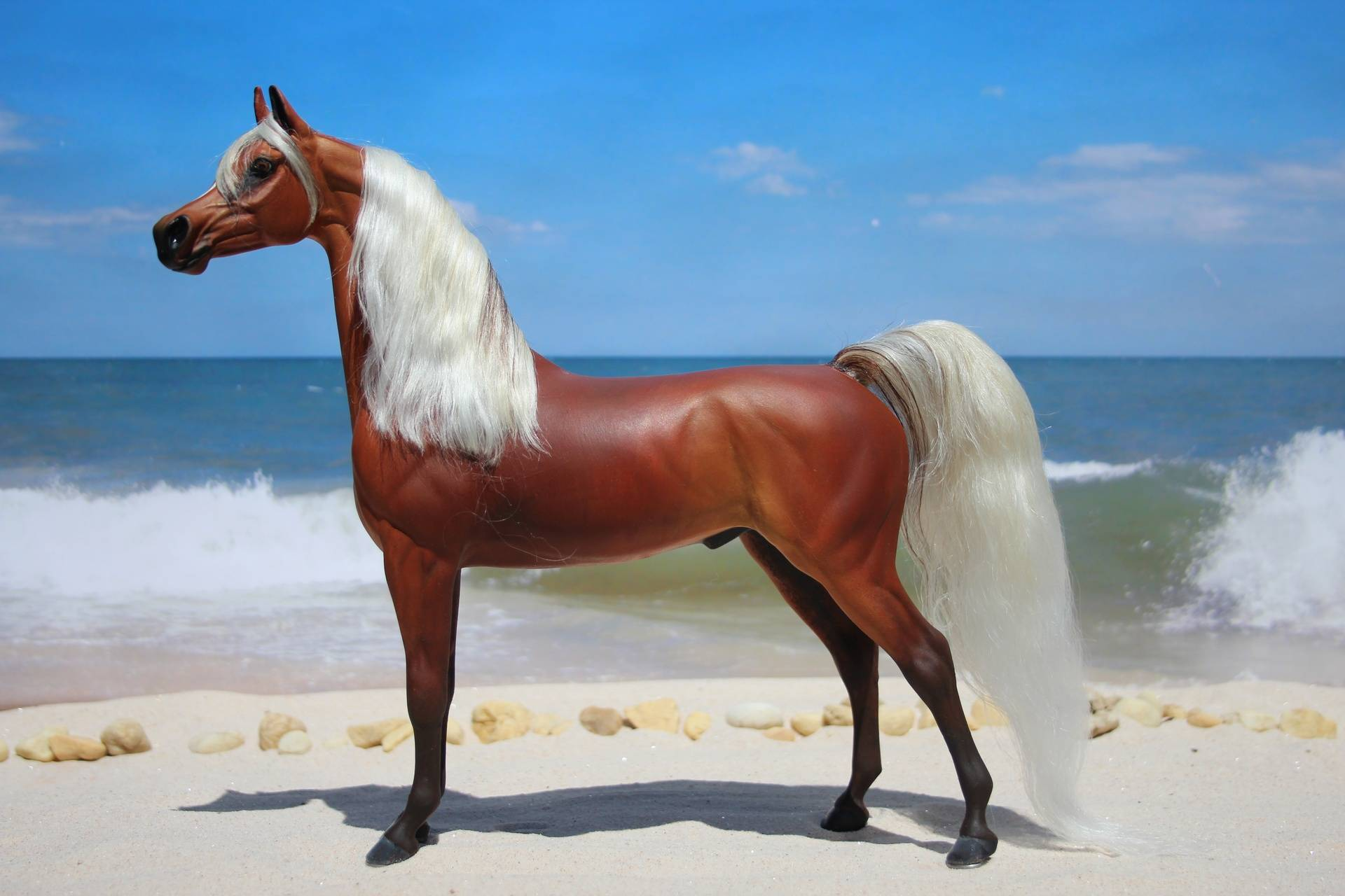 Red bay silver part Arabian