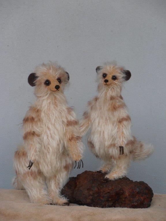 Meerkats two sizes