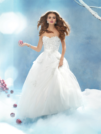Disney Fairytale Weddings!