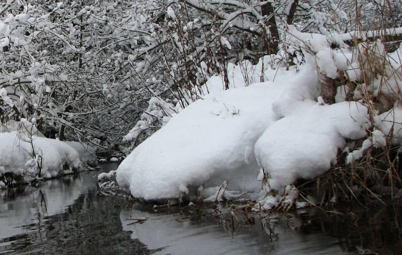 Jan 10, snow 9