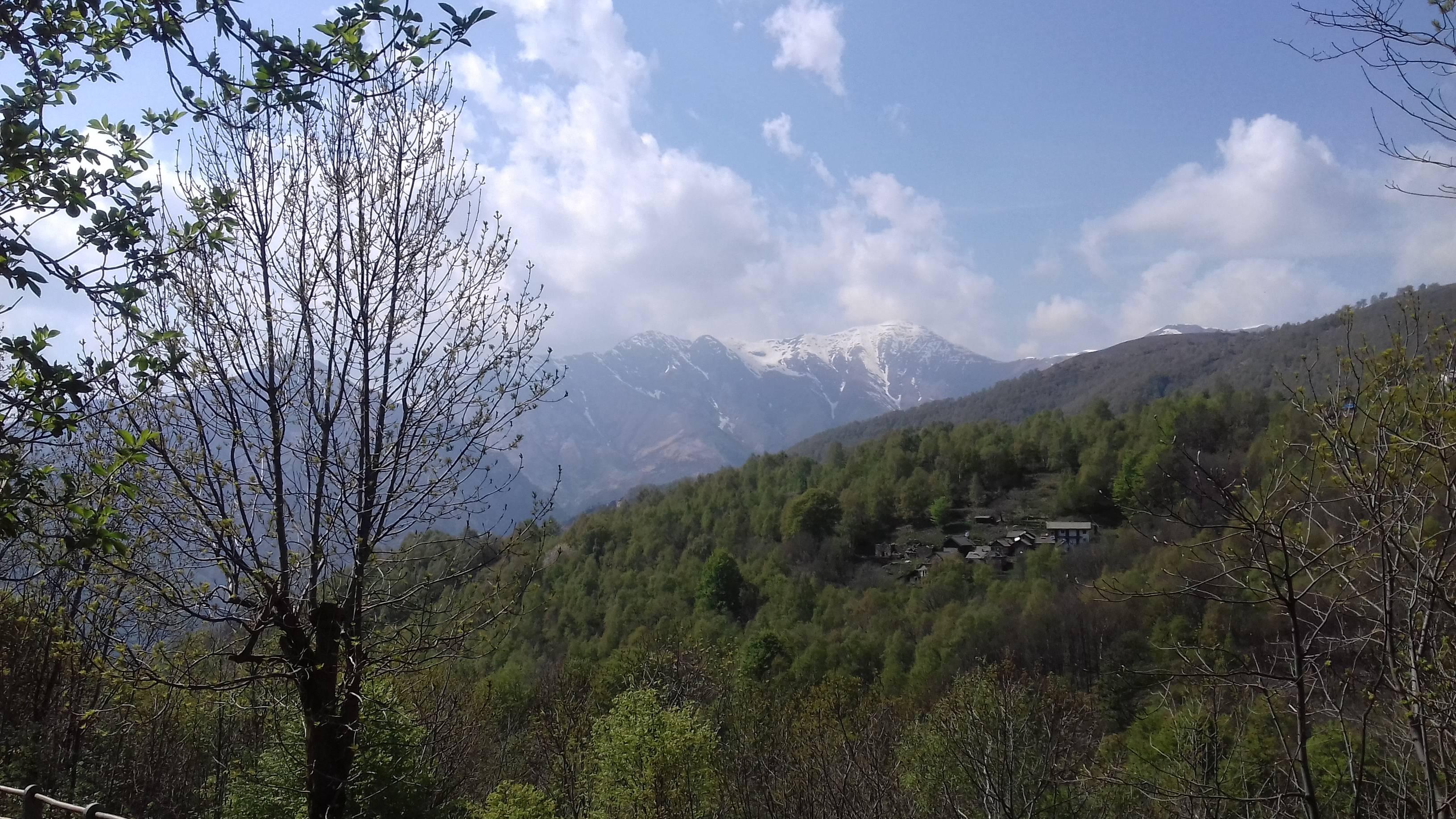 Vista dal sentiero nel bosco nelle vicinanze della casa/View from a path in the wood in the neighborhood of our house