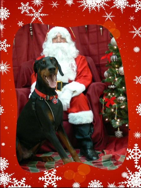 Snickers and Santa