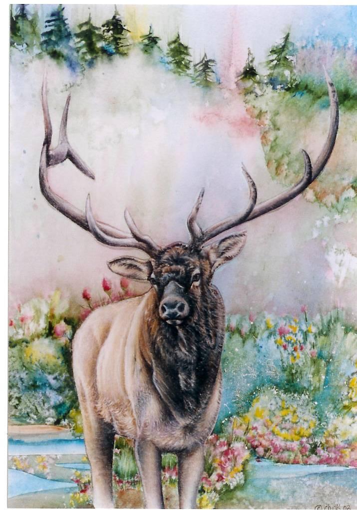 April Elk