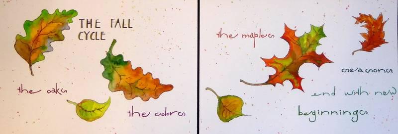 The Fall Season - Cycles