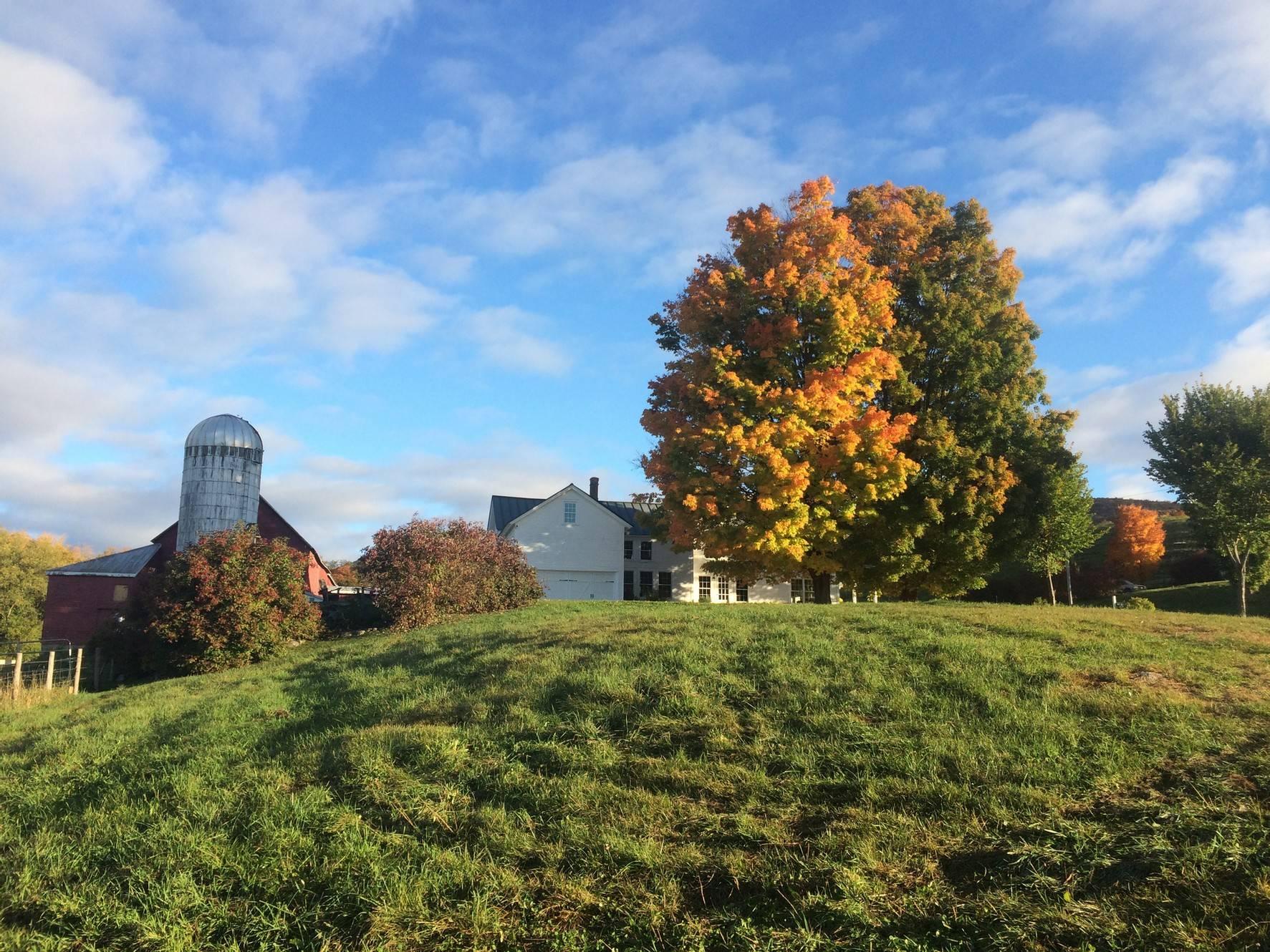 Baird Farm!
