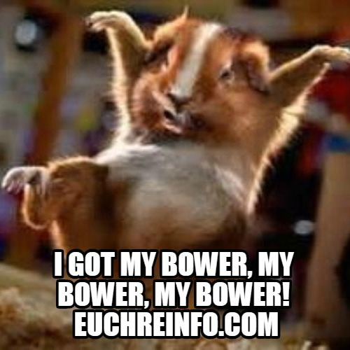 I got my bower, my bower, my bower!