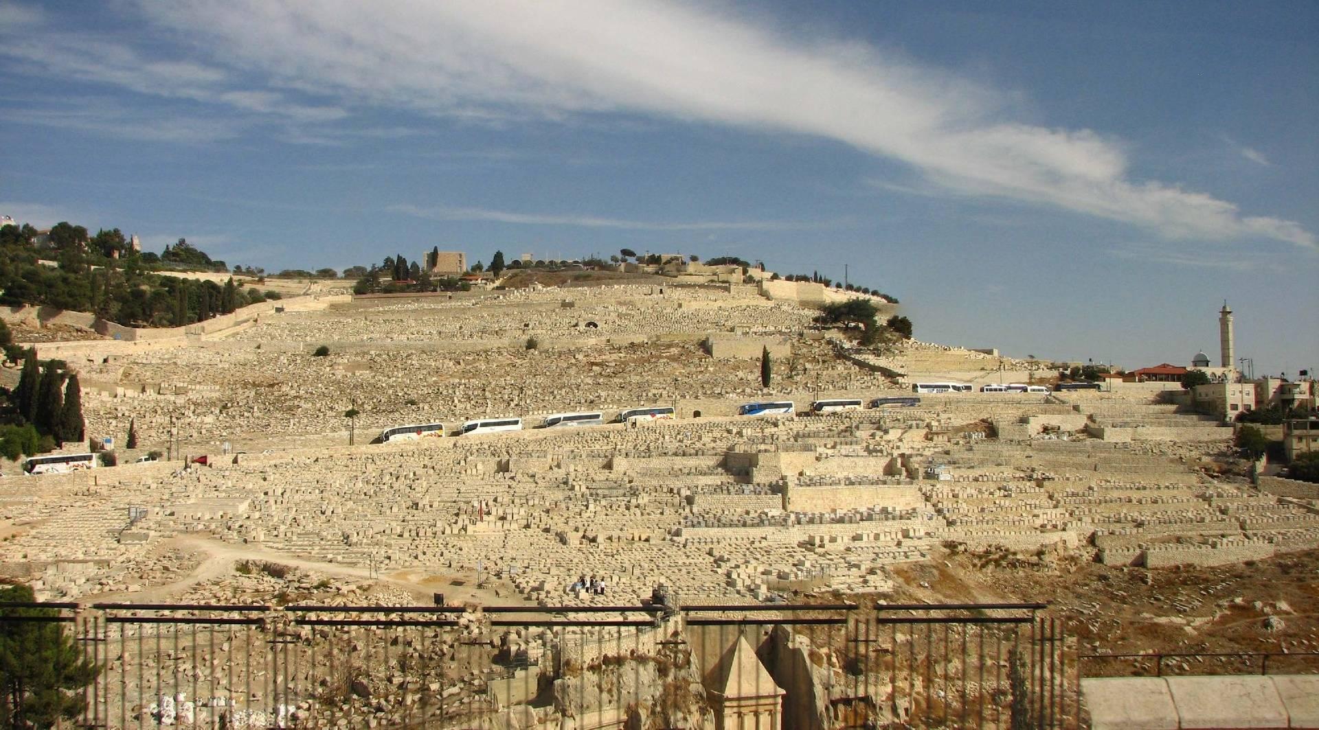 Mount of Olives 4