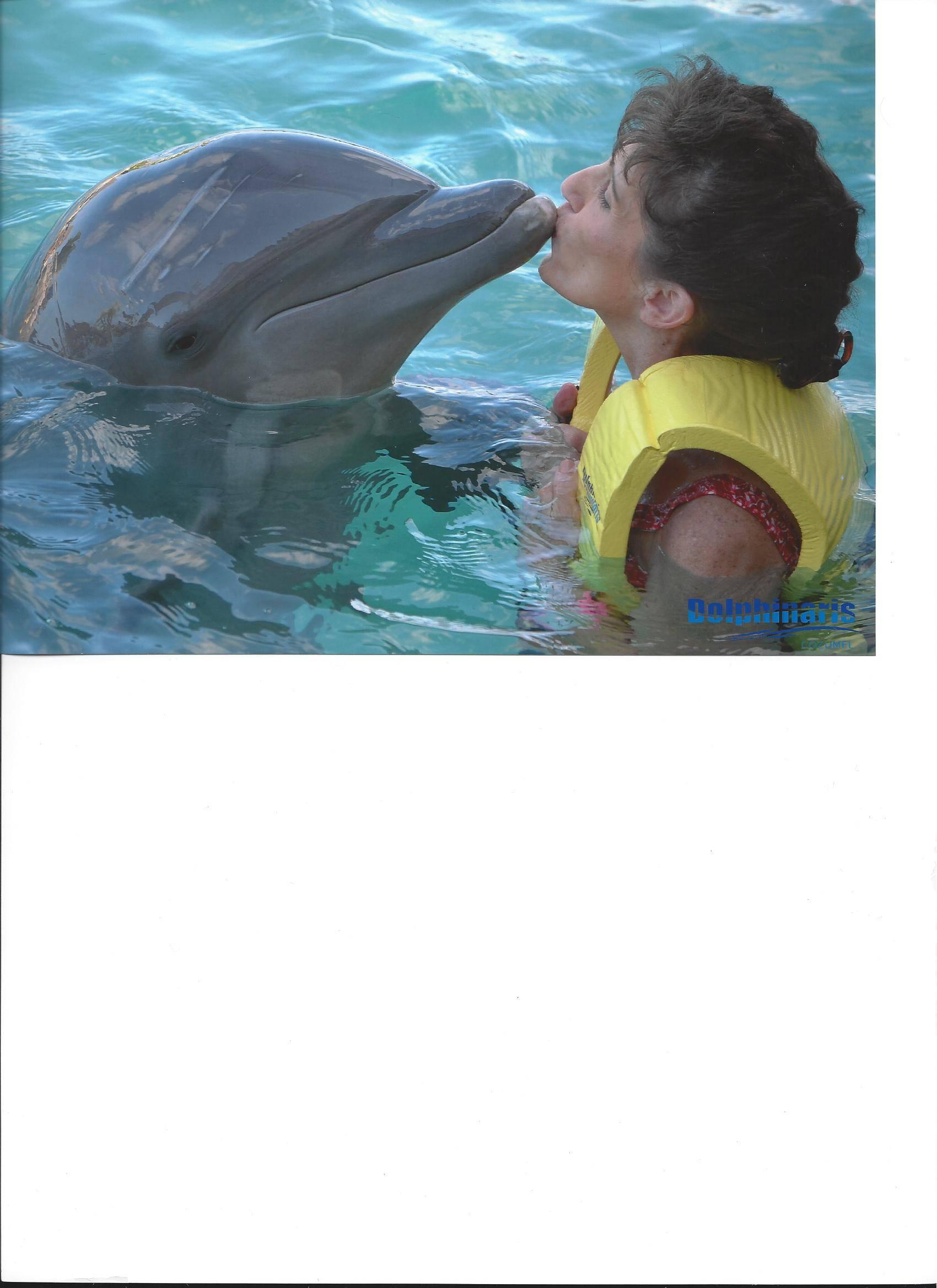 Violet Kissing Dolphin - Cozumel