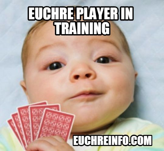 Euchre player in training.