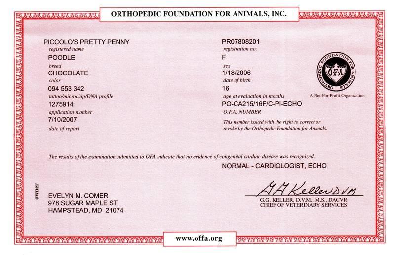 Penny OFA cardiac
