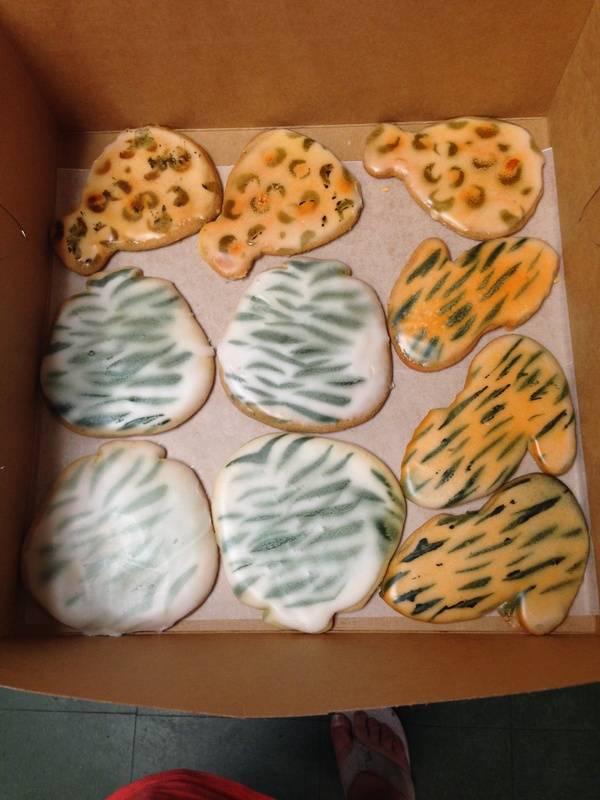Sugar Cookies  Animal Print