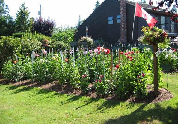 Frank & Margaret's Garden #1