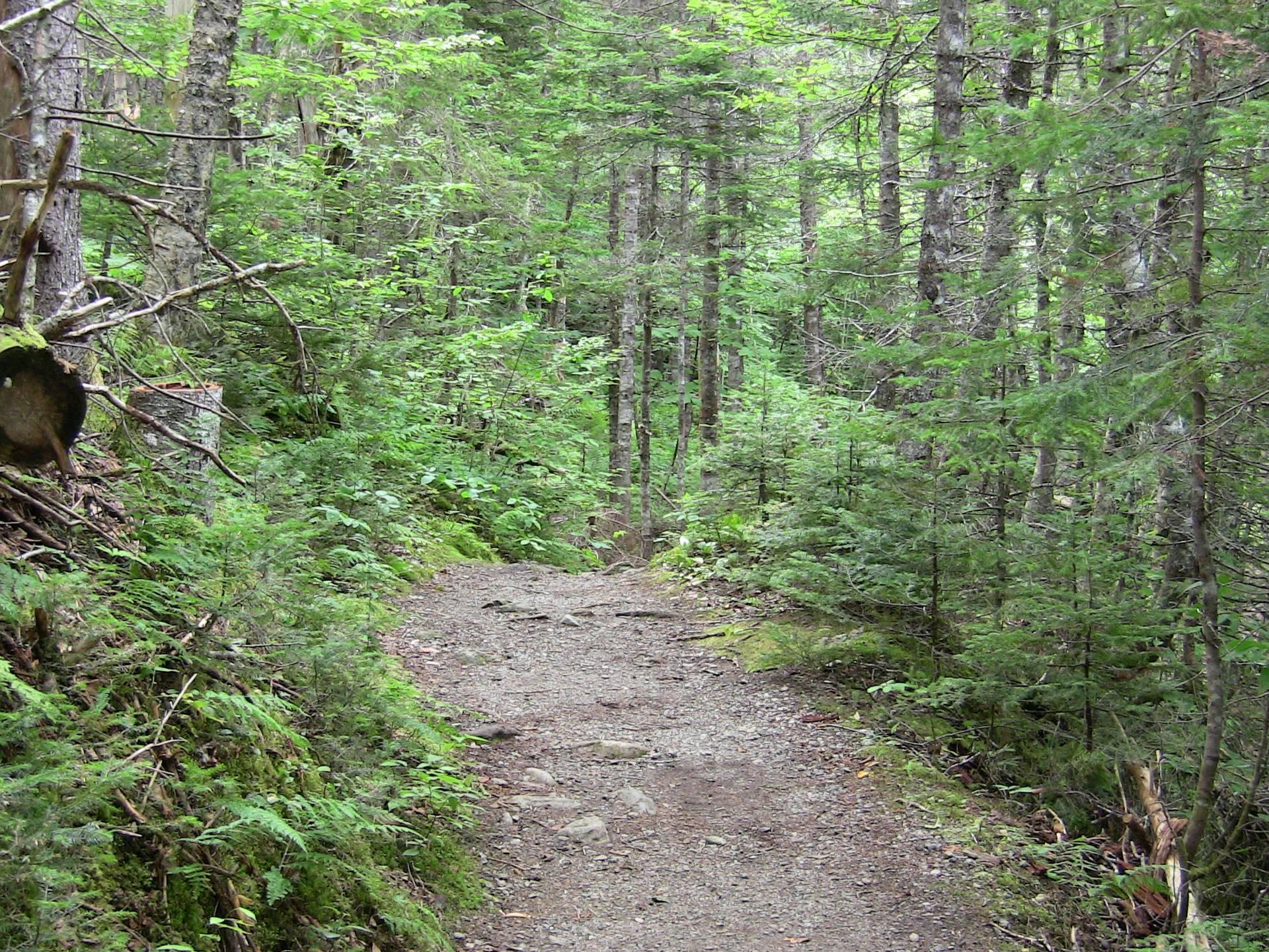 Uisage Ban Falls Provincial Park - View 2