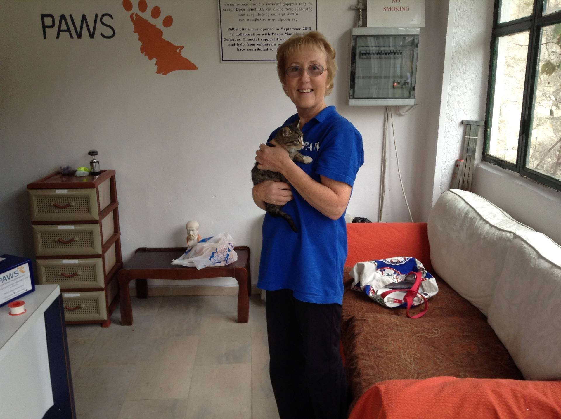 Lindsay and clinic kitten