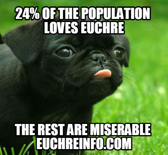 24% of the population loves Euchre. The rest are miserable.