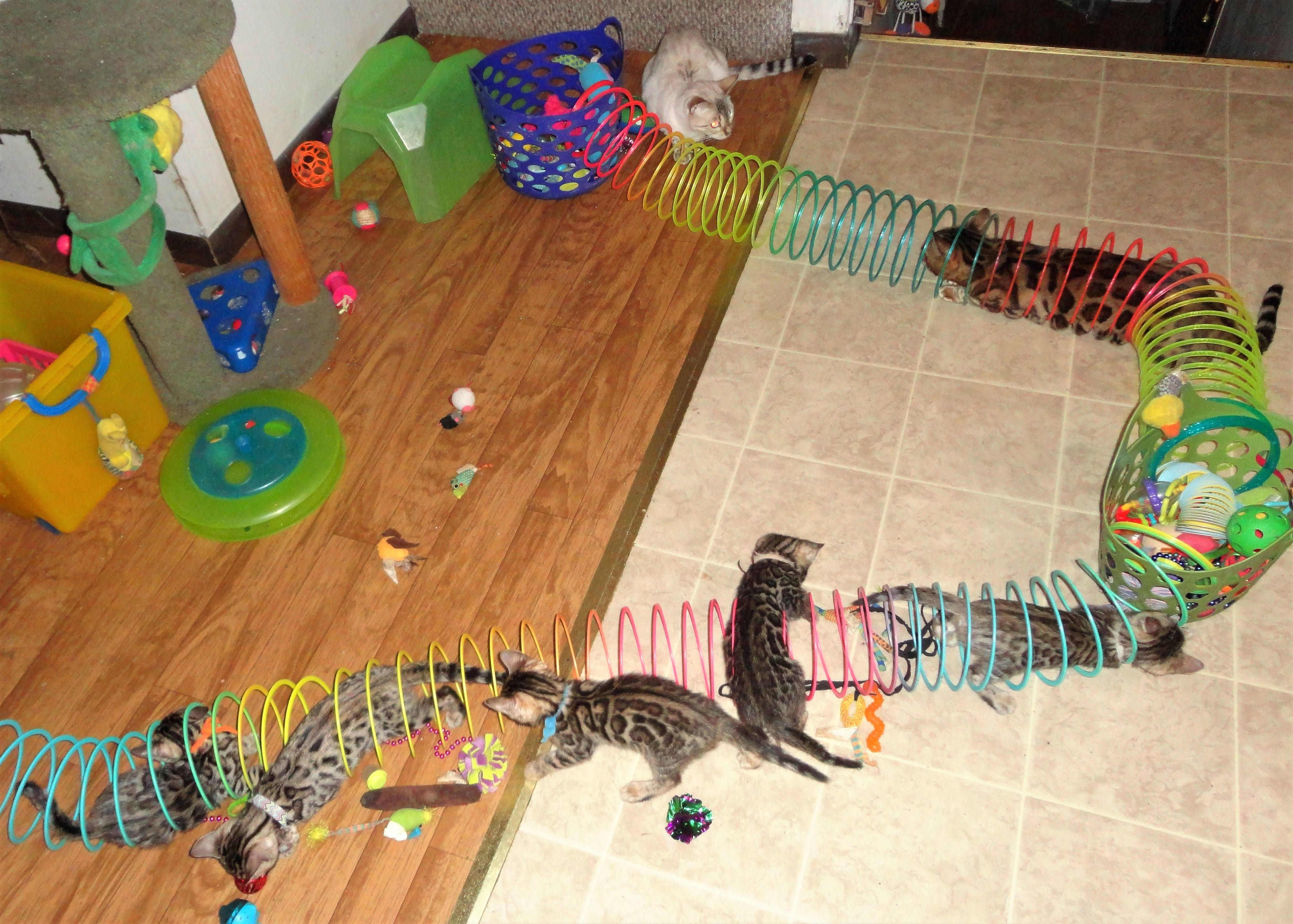 HAVING FUN WITH ENORMOUS SLINKY TUNNELS!