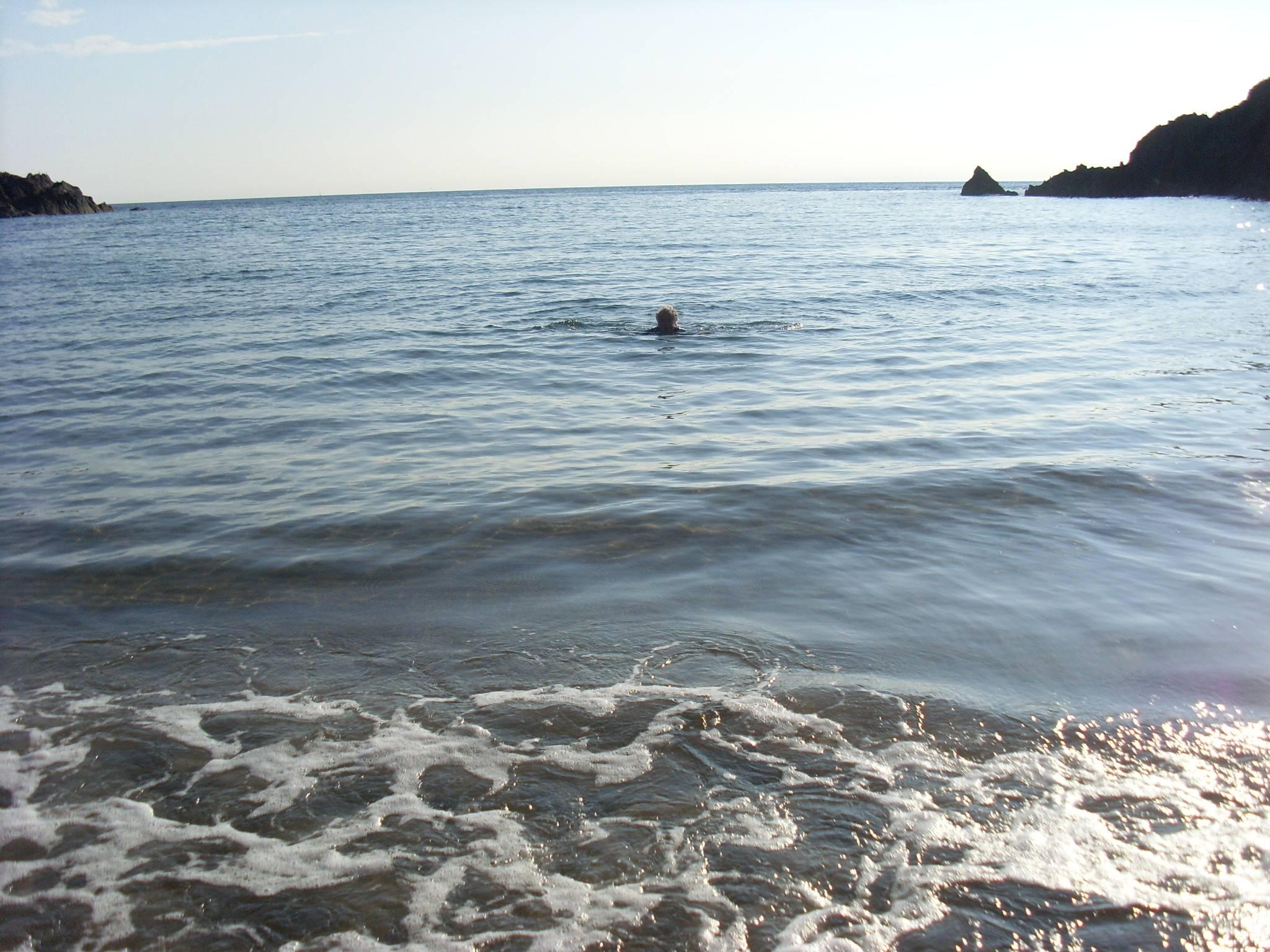 Swim in the sea.