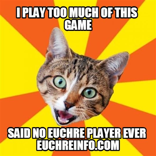 I play too much of this game...said no Euchre player ever.