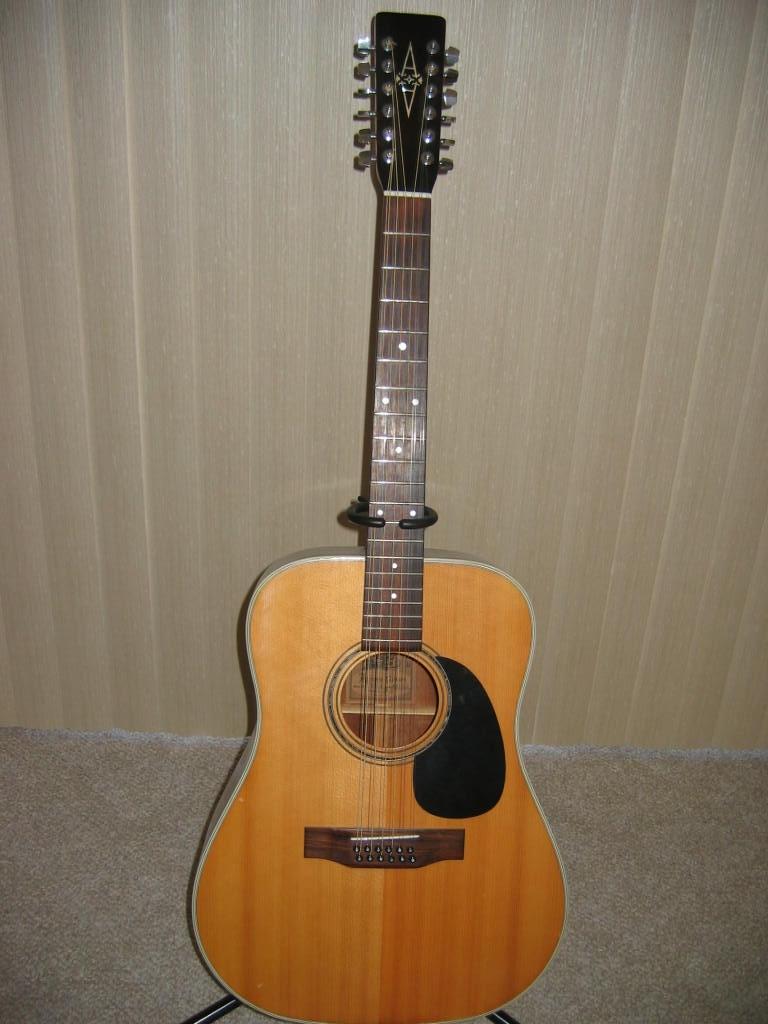 Alvarez 12 String Acoustic / Electric.