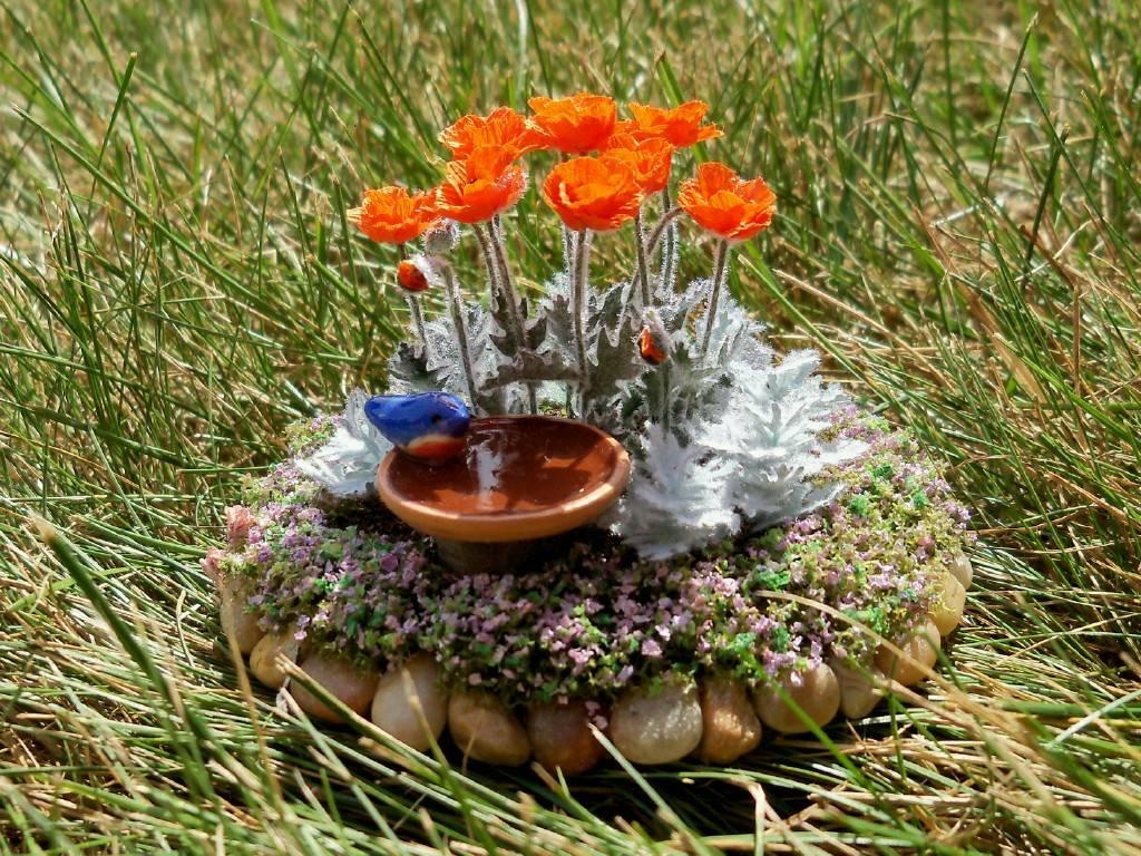 Poppy flower bed