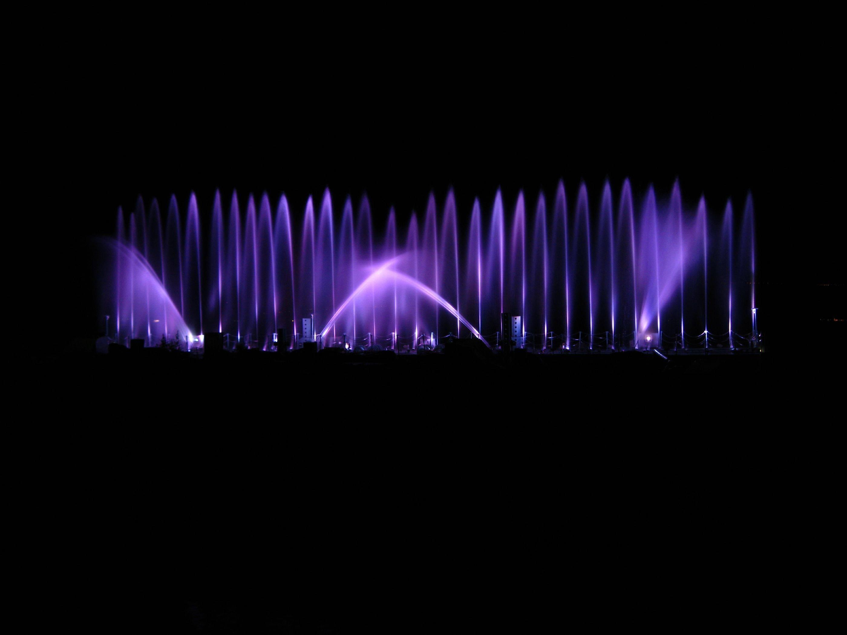 Purple Lights 2