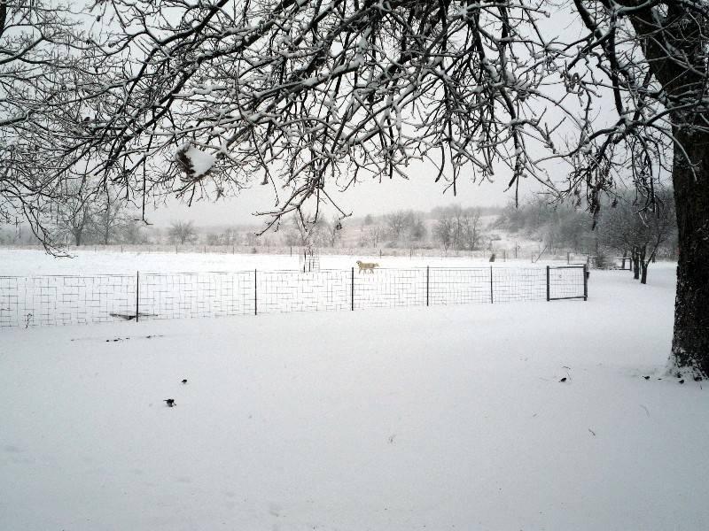 Jan 29, 2010 Cold