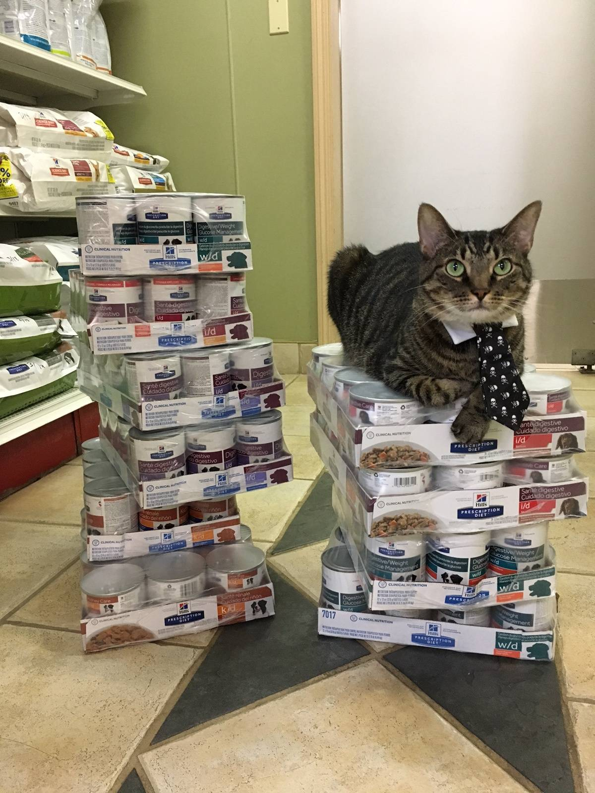 Happy--Quality Control Officer
