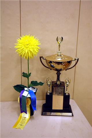 Paul & Cheryl H.~Wyn's SunDazzler~Best in Show
