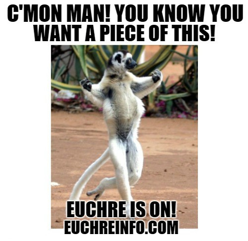 C'mon man! You know you want a piece of this! Euchre is on!