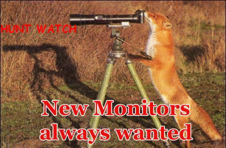 Meercat....monitor