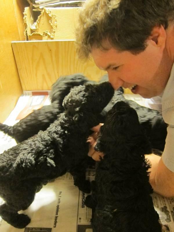 Kisses to Tom!  4 weeks old.